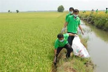 Vứt xác động vật ra môi trường bị phạt đến 3 triệu đồng