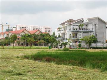 Xây nhà trên đất trồng lúa bị phạt thế nào?