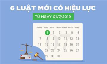 Infographic: Tổng quan 6 Luật có hiệu lực từ ngày 01/7/2019