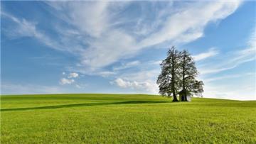 Top 12 mẫu đơn về đất đai mà người sử dụng đất cần biết
