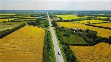Quyền hưởng dụng đất đai: Những điều người dân cần biết