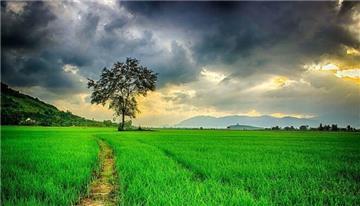 Công nhận quyền sử dụng đất là gì? Điều kiện công nhận thế nào?