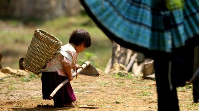 Tổng số hộ nghèo trên cả nước