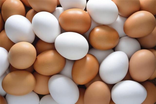 hạn ngạch thuế quan nhập khẩu trứng, gia cầm