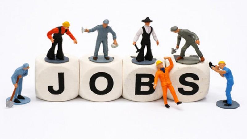 Bảo hiểm thất nghiệp 2019