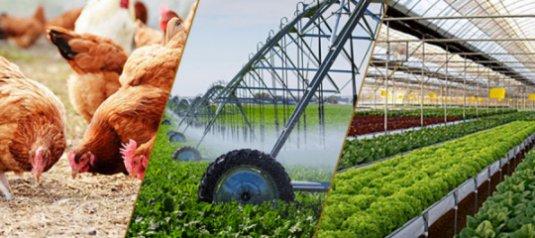 Điều kiện kinh doanh trong nông nghiệp