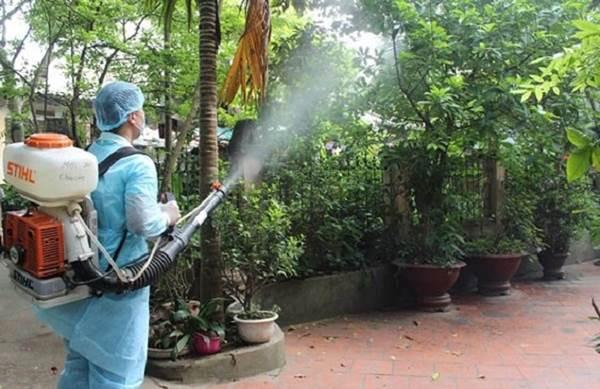chiến dịch diệt bọ gậy