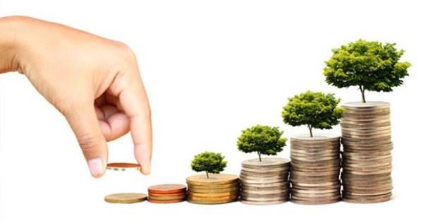 chia lợi nhuận của dự án tài chính vi mô