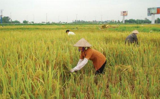 Thủ tục hành chính mới liên quan đến bảo hiểm nông nghiệp