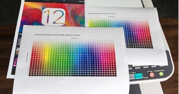 dùng bản photocopy màu để chứng thực