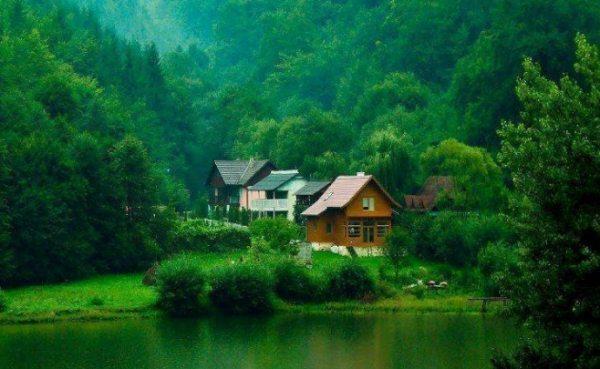 cấm mua bán đất đai