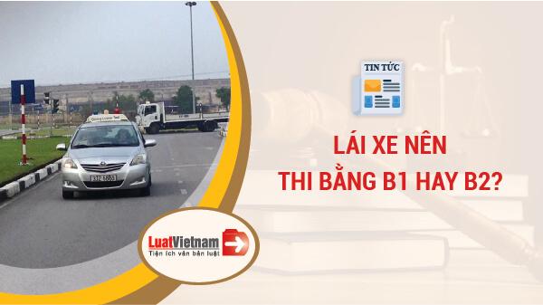 Nên thi bằng lái xe B1 hay B2? (Ảnh minh họa)