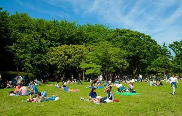 Chính thức cấm uống rượu bia trong công viên