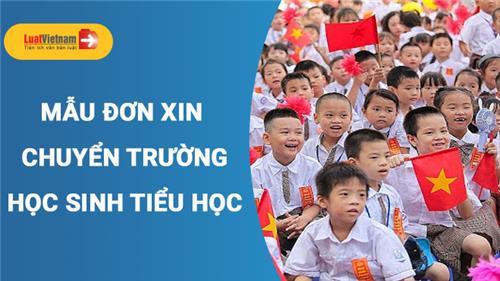 Mẫu Đơn xin chuyển trường cho học sinh tiểu học trong nước