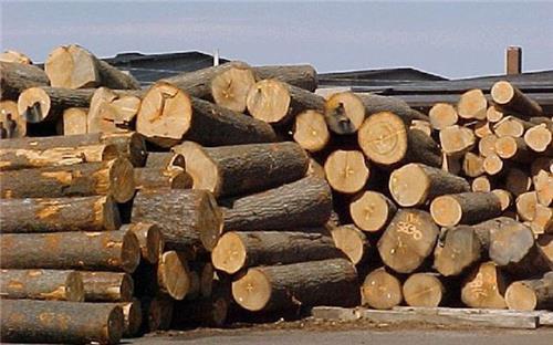 Quy định mới về thủ tục xuất, nhập khẩu gỗ từ 30/10/2020